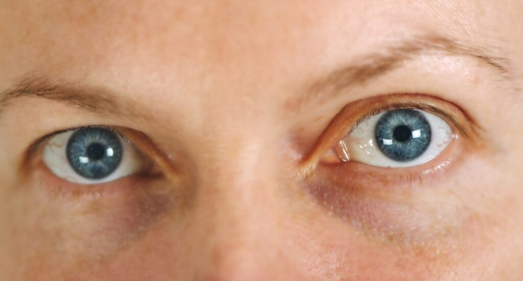 Blue adult female eyes without make up